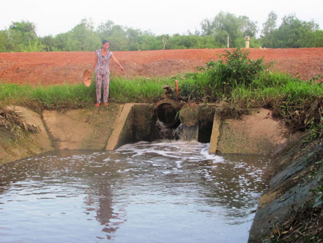 """Nhà máy Xử lý nước thải Khu công nghiệp Long Thành đang """"bức tử"""" sông Đồng Nai - Ảnh: petrotimes.vn"""