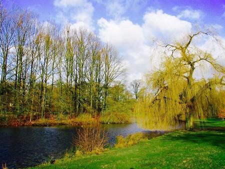 Công viên Laan Van Presikkaaf trên đường từ nhà đến trường ở Arnhem (năm 2004)