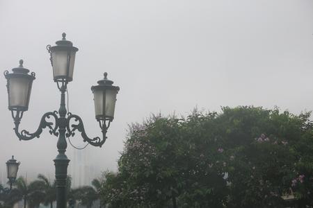 """Hoa bằng lăng và """"mùa hạ khói mây"""""""