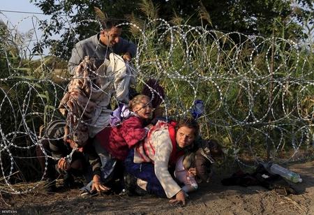 Một trong những tấm ảnh động lòng nhất của tấn thảm kịch người tỵ nạn ở Hungary: vượt rào ở biên giới Hung - Serbia - Ảnh: Szabó Bernadett (Reuters)