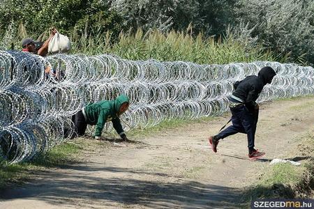 Các chuyên gia về di trú và xã hội học Hung cũng cho rằng, không một bức tường hay hàng rào nào có thể ngăn cản người tỵ nạn đi tìm đường sống - Ảnh: Gémes Sándor (szegedma.hu)