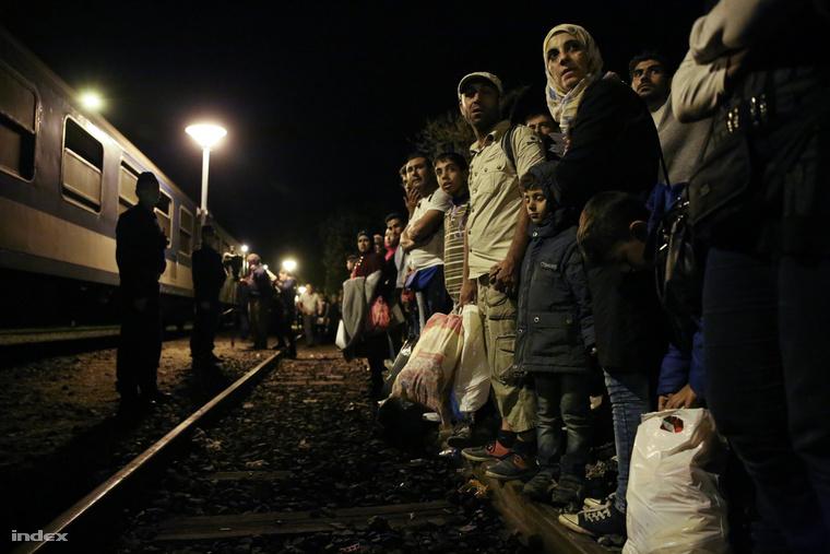 Đoàn tàu 16 toa chở khoảng 800 người tỵ nạn kịp nhập cảnh Hungaery trước nửa đêm đến thắng biên giới Hung - Áo - Ảnh: Ajpek Orsi