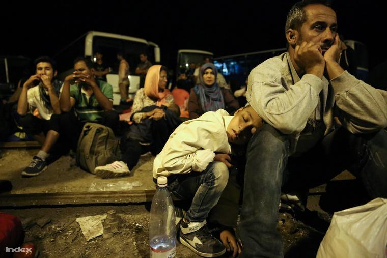 Thảm kịch tỵ nạn - Ảnh: Ajpek Orsi
