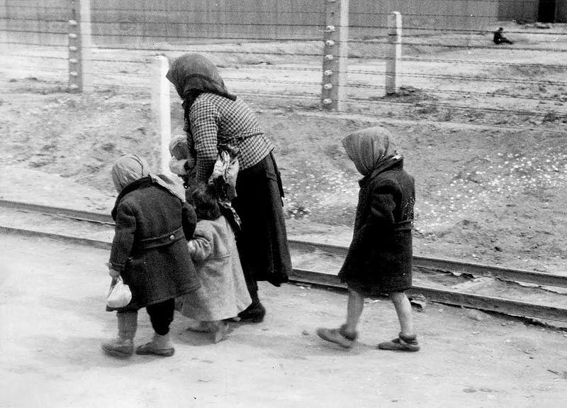 Người Do Thái đến từ Hungary - một phụ nữ đứng tuổi và trẻ em trên con đường dẫn tới phòng hơi ngạt ở trại Auschwitz-Birkenau (1944) - Ảnh tư liệu