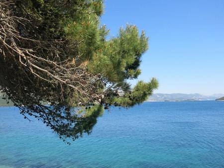 Biển rất đẹp và thanh bình, cá rất nhiều và an toàn, nhưng ở một nơi khác...