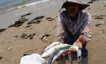 Thảm họa môi trường không gì bù đắp nổi, đẩy nhiều triệu ngư dân vào cảnh khốn cùng và hủy hoại toàn bộ hệ sinh thái biển, có thể đổi bằng tiền?