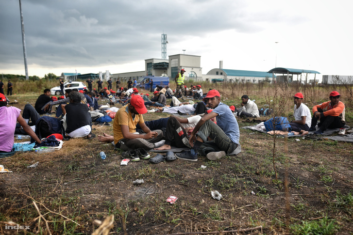 Nhóm người xin tỵ nạn tuyệt thực tại vùng Horgos, biên giới Serbia - Hungary. Ngày 26-7-2016 - Ảnh: Molnár Zsolt (index.hu)