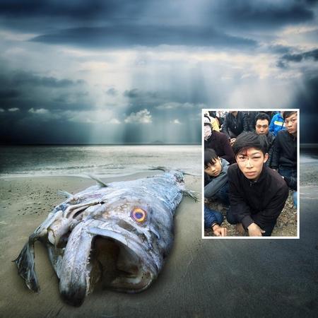 Thảm cảnh cá chết, môi trường bị hủy hoại, người bị hành hung, chà đạp