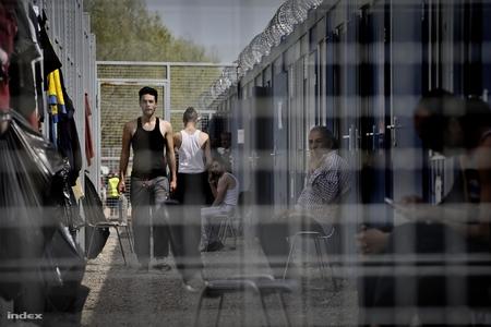 """Người tỵ nạn tại """"khu vực quá cảnh"""" ở vùng biên giới Röszke - Ảnh: Huszti István (index.hu)"""