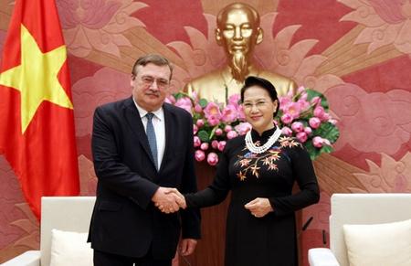 Chủ tịch Quốc hội Việt Nam Nguyễn Thị Kim Ngân (phải) tiếp Đại sứ Hungary tại Việt Nam Őry Csaba. Hà Nội, 17-2-2017 - Ảnh: Trung Thành