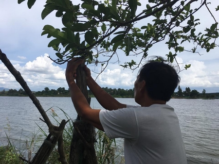 Chú đang đứng trước hồ ô nhiễm nặng Ea Knốp. Nhiều năm qua chú đã cùng một số người dân trong thị trấn Ea Knốp kêu gào về nạn ô nhiễm do nhà máy đường xả ra hồ nhưng vô vọng
