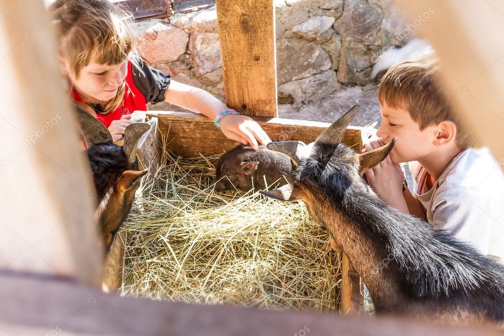 Nói ra sao với những đứa trẻ yêu động vật? - Ảnh: hu.depositphotos.com