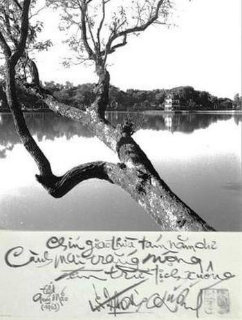 """""""Bức ảnh Hồ Gươm, vạt nắng soi thân cây gân guốc in trên mặt nước dịu dàng"""" - Ảnh do nhân vật cung cấp"""