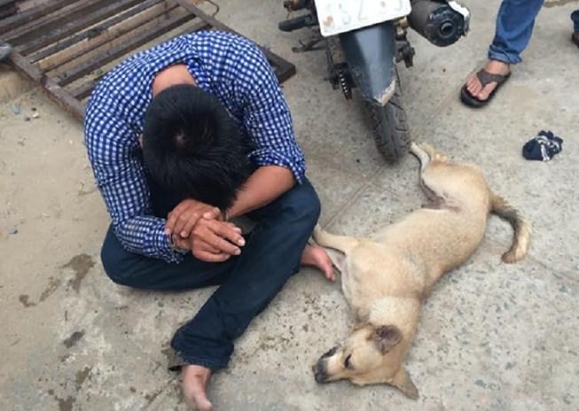 """Tình trạng """"vô thiên vô pháp"""" xảy ra triền miên. Ảnh: trộm chó và những hậu quả khôn lường"""