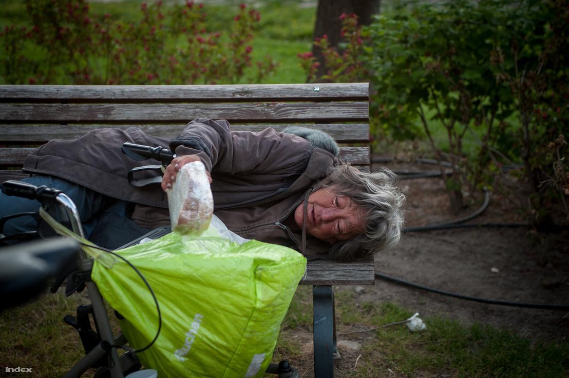 Vô gia cư là vấn đề xã hội, không thể giải quyết được bằng cách trừng phạt hành chính - Ảnh: index.hu