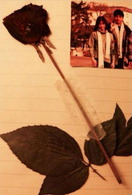 Cành hồng bị luồn dưới đáy thùng rác - Ảnh tư liệu
