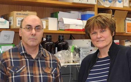 GS. Katalin Karikó cùng đồng sự, TS. Drew Weissman, những nhân vật trọng yếu trong nghiên cứu công nghệ mDNA - Ảnh: Đại học Pennsylvania